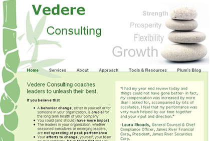 consulting web site design company, marketing and advertising for consulting company